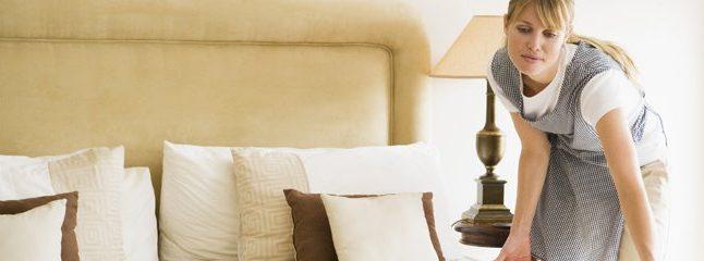 fiche m tier femme de m nage mon. Black Bedroom Furniture Sets. Home Design Ideas